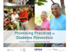 Promising Practices in Diabetes Prevention A New Toolkit and Stories from the Field Slides